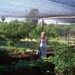 Letzte Anweisungen zur Gartenpflege von Oma